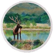 Royal Velvet Round Beach Towel