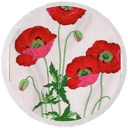 Roys Collection 7 Round Beach Towel