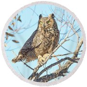 Owlish Round Beach Towel