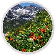 Ruby Mountain Wildflowers - Vertical Round Beach Towel