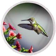 Ruby Throated Hummingbird #1 Round Beach Towel