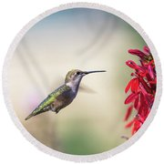 Ruby Throated Hummingbird 2017-2 Round Beach Towel