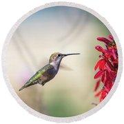 Ruby Throated Hummingbird 2017-2 Round Beach Towel