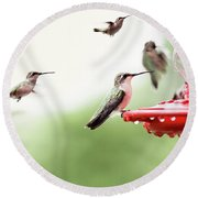 Ruby-throated Hummingbirds Round Beach Towel by Stephanie Frey