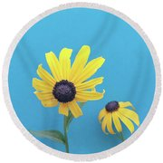 Round Beach Towel featuring the photograph Rudbeckia 2 by Cindy Garber Iverson