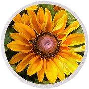 Rudbeckia Bloom Round Beach Towel by Sheila Brown