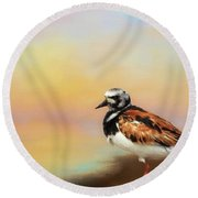 Ruddy Turnstone Round Beach Towel by Suzanne Handel