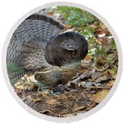 Ruffed Up- Ruffed Grouse Displaying Round Beach Towel