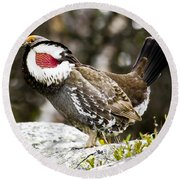 Ruffled Grouse II Round Beach Towel