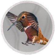 Rufous Male Hummingbird Round Beach Towel