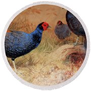 Rufous Tailed Crested Pheasant Round Beach Towel by Joseph Wolf