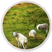 Round Beach Towel featuring the photograph Rural Idyll. Wicklow. Ireland by Jenny Rainbow
