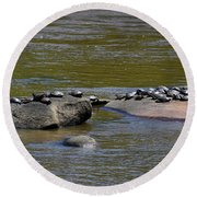 Rush Hour At The Spa Round Beach Towel