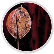Rusted Flower Round Beach Towel by Allen Beilschmidt