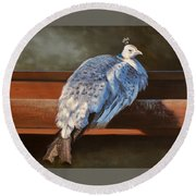 Rustic Elegance - White Peahen Round Beach Towel
