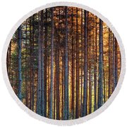 Rusy Forest Round Beach Towel