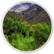 Round Beach Towel featuring the photograph Sabino Canyon H33 by Mark Myhaver