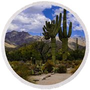 Sabino Canyon No4 Round Beach Towel