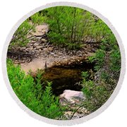 Round Beach Towel featuring the photograph Sabino Canyon Op44 by Mark Myhaver