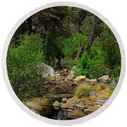 Round Beach Towel featuring the photograph Sabino Canyon V49 by Mark Myhaver