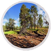 Sacred Canyon, Flinders Ranges Round Beach Towel