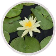 Sacred Lotus Round Beach Towel