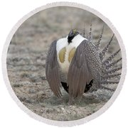 Sage Grouse Round Beach Towel