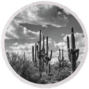 Round Beach Towel featuring the photograph Saguaro And Blue Skies Ahead In Black And White  by Saija Lehtonen