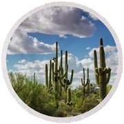 Round Beach Towel featuring the photograph Saguaro And Blue Skies Ahead  by Saija Lehtonen