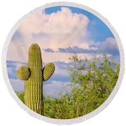 Saguaro And Mesquite In Monsoon Season Round Beach Towel