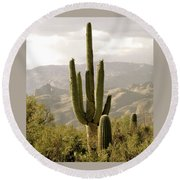 Round Beach Towel featuring the photograph Saguaro by Brenda Pressnall