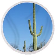 Saguaro National Park Arizona Round Beach Towel