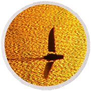 Round Beach Towel featuring the photograph Sailing On Gold by Ana Maria Edulescu