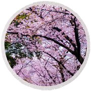Sakura Round Beach Towel