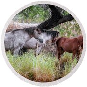 Salt River Wild Horses Round Beach Towel