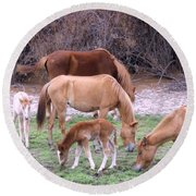 Salt River Wild Horses In Winter Round Beach Towel