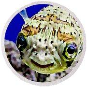 Saltwater Porcupinefish Round Beach Towel