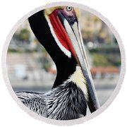 Round Beach Towel featuring the photograph San Diego Pelican by Kyle Hanson