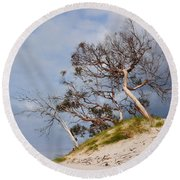 Sand Dune With Bent Trees Round Beach Towel