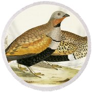 Sand Grouse Round Beach Towel by English School