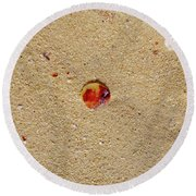 Round Beach Towel featuring the photograph Sand Shell Art by Francesca Mackenney