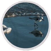 Sanderling Reflection Delray Beach Florida Round Beach Towel