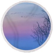 Sandhill Crane Flyover At Sunrise Round Beach Towel