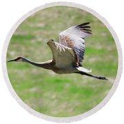 Sandhill Crane In Flight Round Beach Towel