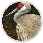 Sandhill Crane - Realistic Bird Wildlife Art Round Beach Towel