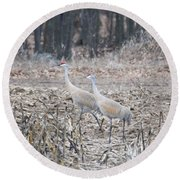 Round Beach Towel featuring the photograph Sandhill Cranes 1171 by Michael Peychich
