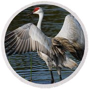Sandhill Crane Wingstretch Round Beach Towel by Larry Nieland