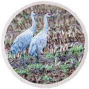 Sandhills In Their Fall Coat Round Beach Towel