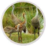 Sandhill Cranes On Alert Round Beach Towel
