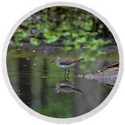 Round Beach Towel featuring the photograph Sandpiper In The Smokies II by Douglas Stucky